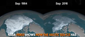 Arctic Ice Melt Half Due to Natural Causes